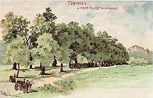 Menschenzug unter Bäumen
