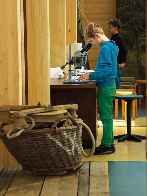Ein Junge an einem Mikroskop