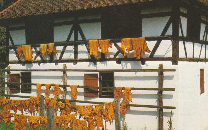 Außenansicht eines historischen Fachwerkgebäudes