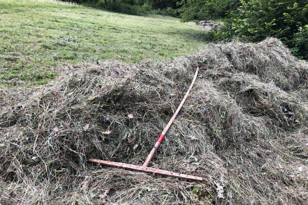 Heugabel auf einem Grashaufen