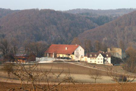 Bauernhof und Burgruine