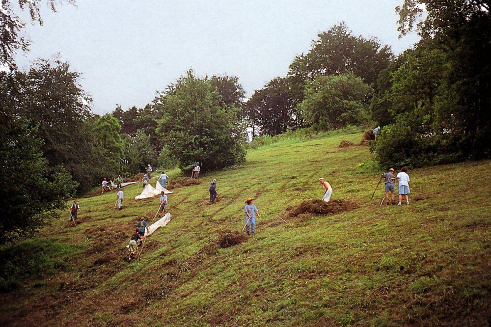 Menschen rechen Gras zusammen