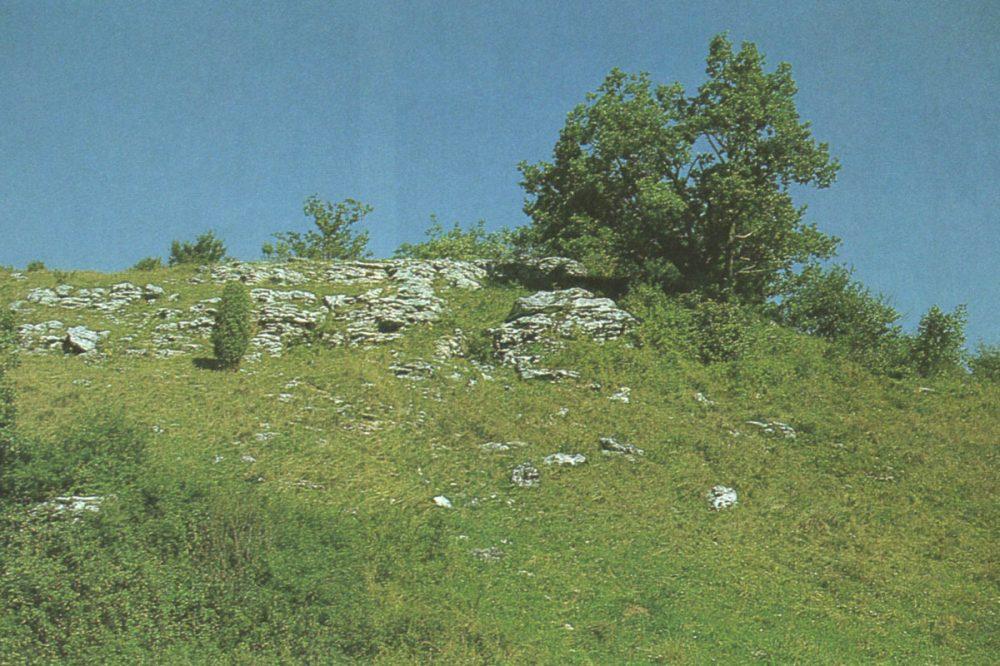 Heidelandschaft mit Felsen