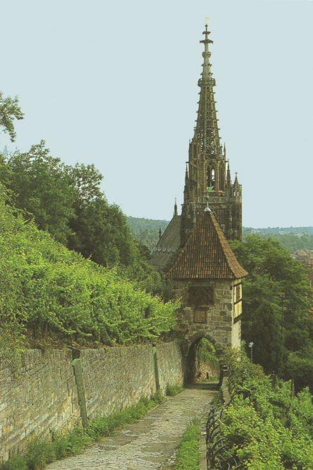 Weinbergweg mit Kirchturm