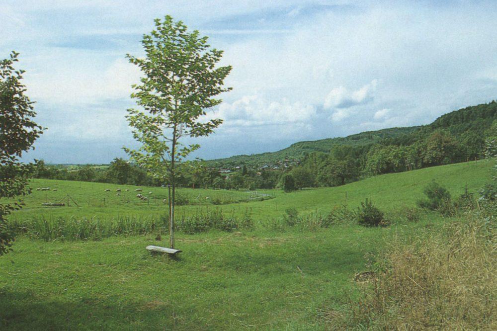 freie Landschaft