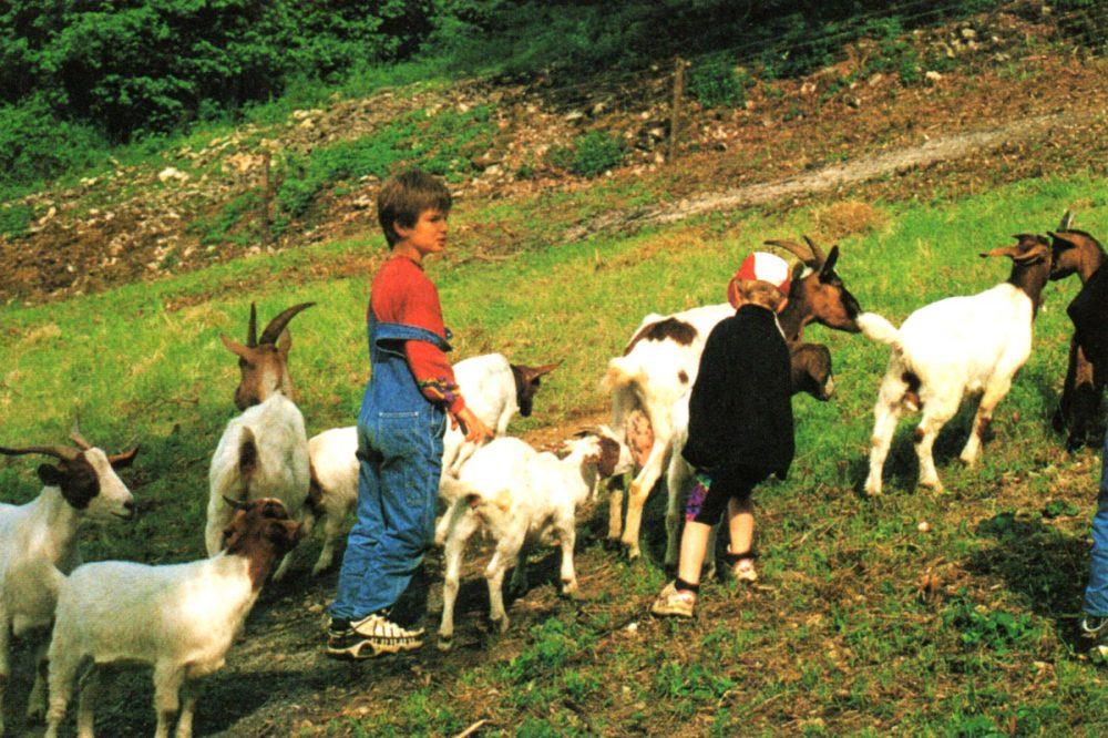 Kinder mit Ziegen
