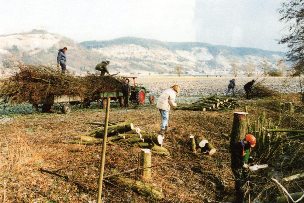 Menschen sammeln zersägtes Holz ein