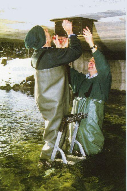 zwei Personen hängen einen Brutkasten auf