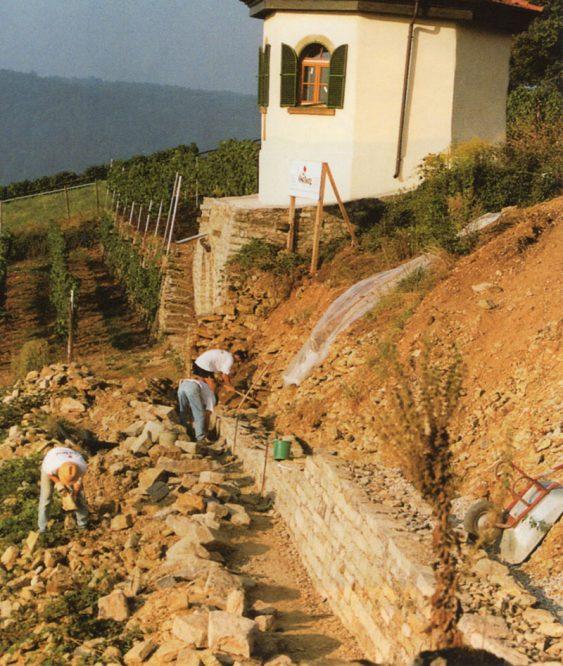 Personen reparieren eine Weinbergmauer