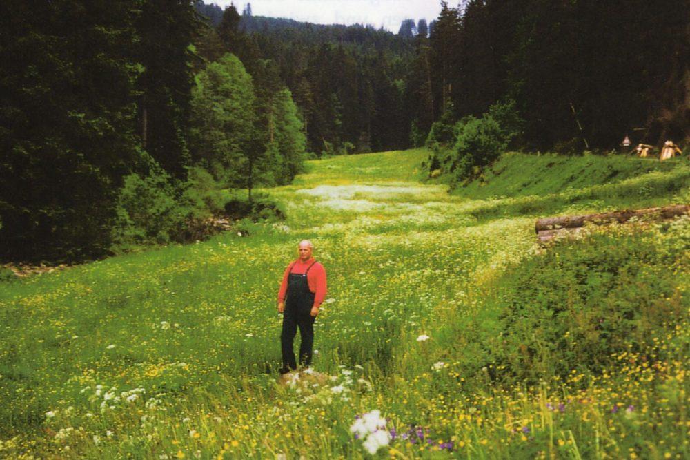 Mann auf einer Wiese im Wald