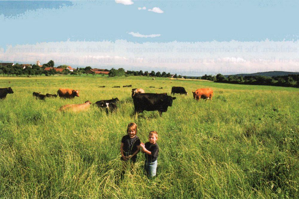 zwei Kinder vor einer Rinderherde