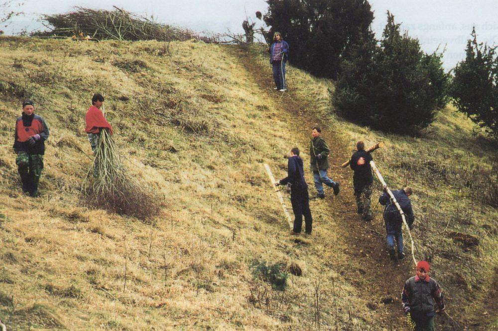 Personen beseitigen Gestrüpp an einem steilen Hang