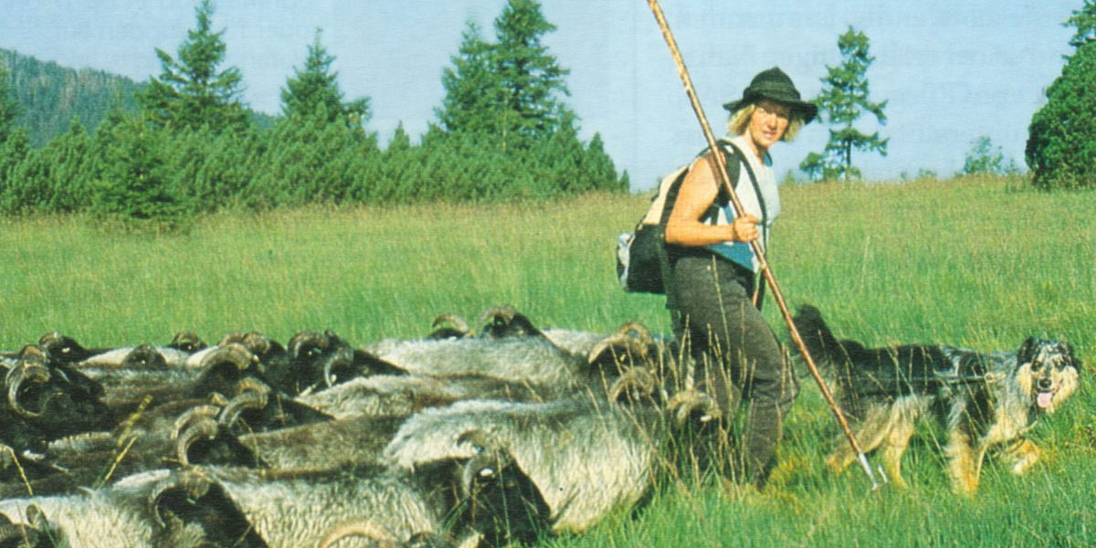Frau mit Ziegenherde und Hund