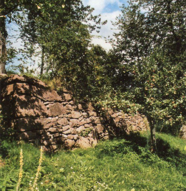 Mauer zwischen Bäumen