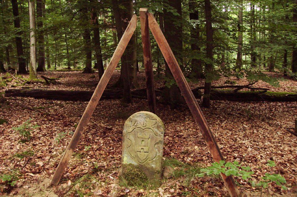 historischer Grenzstein im Wald