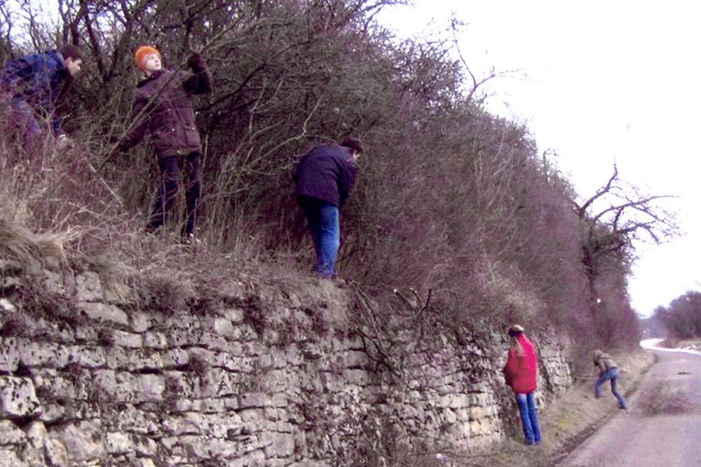 Jugendliche beseitigen Gestrüpp an einer Mauer