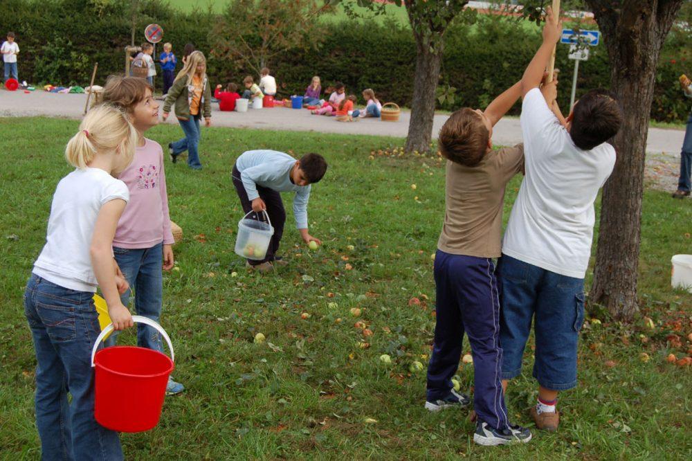 Kinder sammeln Äpfel auf