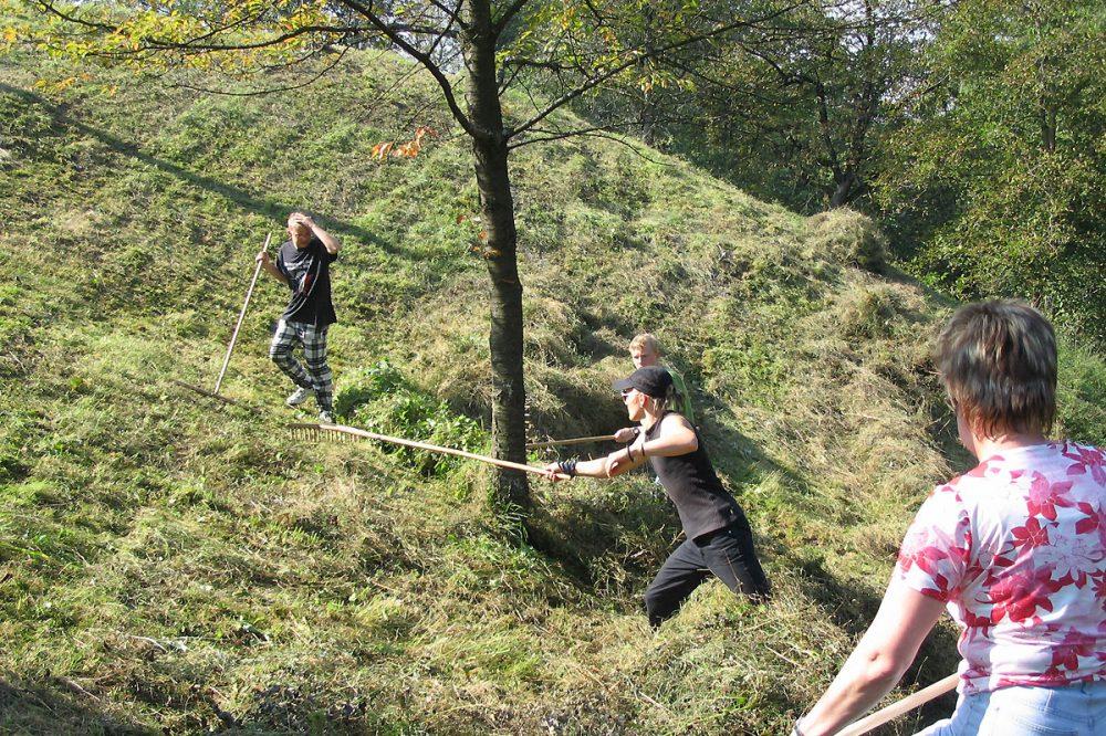 Menschen rechen Gras an einem steilen Hang zusammen