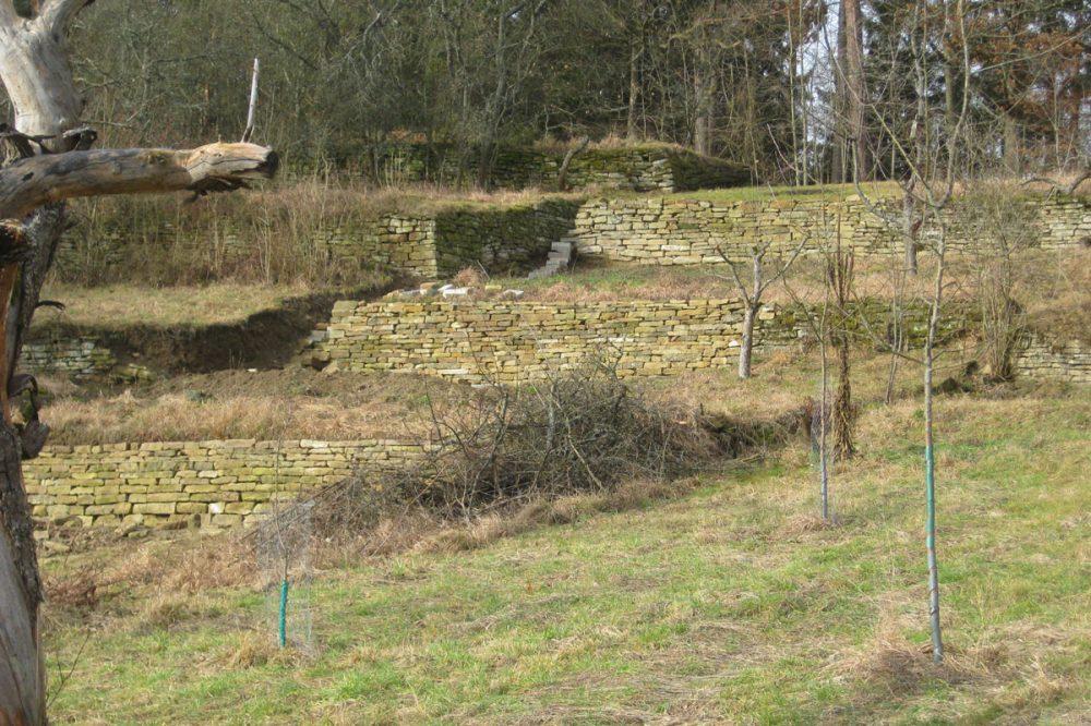 Trockenmauern auf ehemaligen Terrassen-Weinbergen