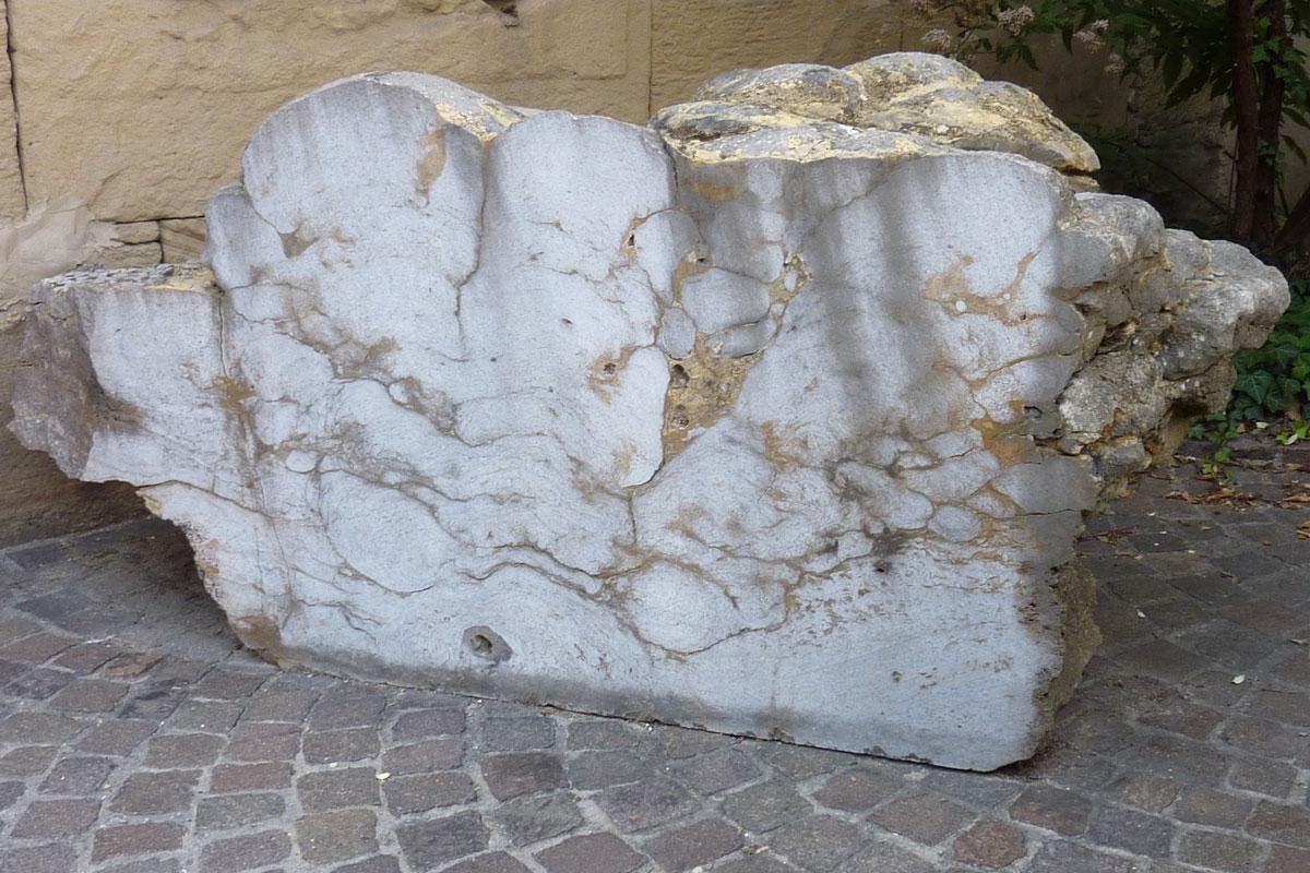 Fossile Schätze aus Hohenlohe