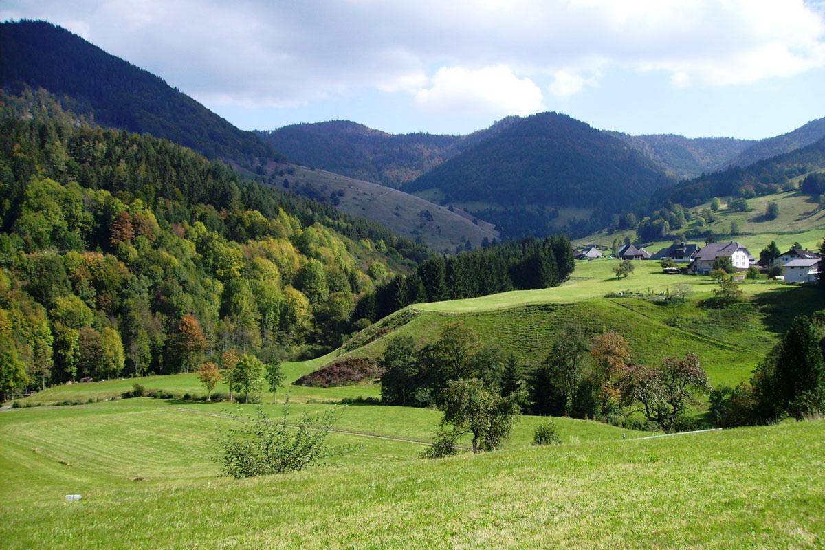 Kulturlandschaft im Biosphärengebiet Schwarzwald