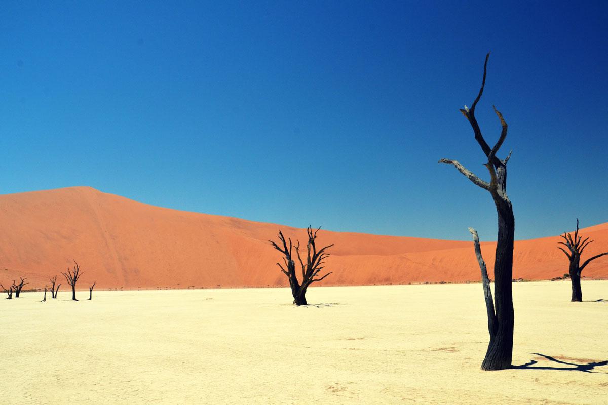 ANKÜNDIGUNG: Namibia – Faszination Südwest-Afrika