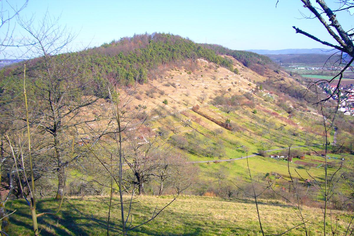 Naturkundliche Wanderung zum Spitzberg