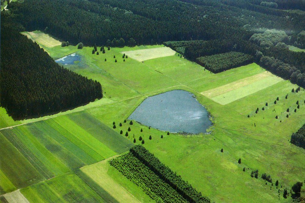 Luftaufnahme eines Weihers inmitten von Wiesen