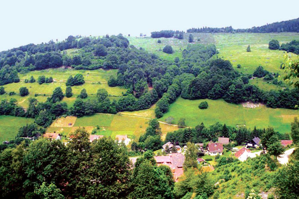 baumbestandene Landschaft mit Siedlung