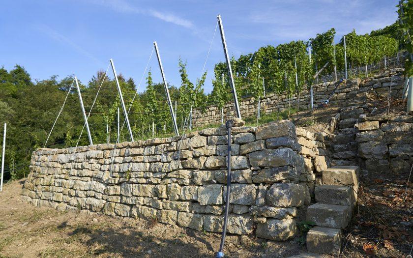 Weinbergmauer